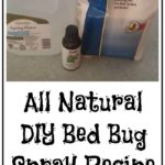 How To Eliminate Bed Bugs Using Baking Soda?