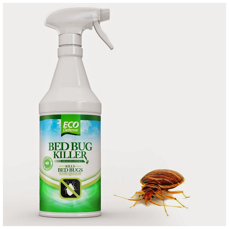 How To Eliminate Bed Bugs