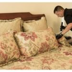 How To Kill Bed Bugs With Heat?