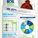 How To See Bed Bugs On Luggage?