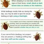 Medication For Bed Bugs