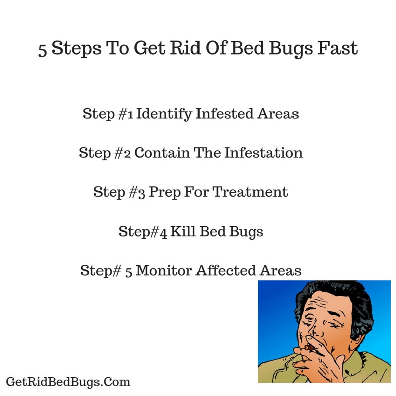 Ways To Get Rid Of Bed Bugs Fast