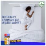 What Kills Bed Bugs Instantly In Nigeria?