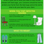 Can You Get Rid Of Bed Bugs In Your Home?