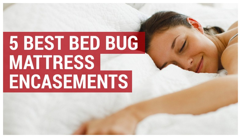 Reviews On Proof Bed Bug Spray