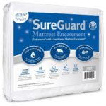 Bed Bug Proof Mattress Cover Review