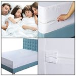 Bed Bugs Box Spring Cover