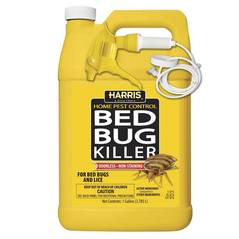 Best Cheap Steamer For Bed Bugs