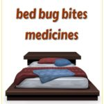 How Do U Get Rid Of Bed Bugs On Clothes?
