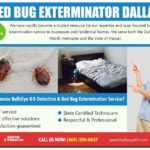 How Much Does Bed Bug Extermination Cost?