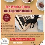How Much Does It Cost To Get A Bed Bug Extermination?