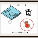 How To Get Rid Of Bed Bugs Myself?