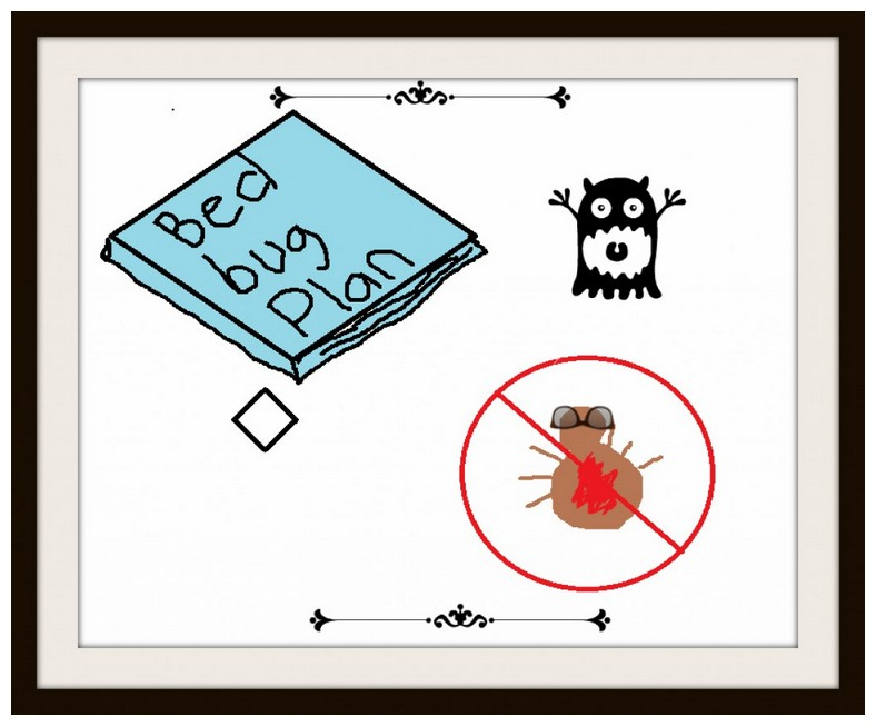 How To Get Rid Of Bed Bugs Myself