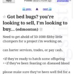 Well Fed Bed Bug