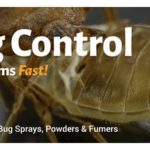 What Can Kill Bed Bugs Fast?