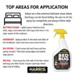 What Household Chemical Kills Bed Bugs?