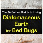What To Use To Kill Bed Bugs At Home?