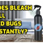 What Will Kill Bed Bugs Fast?