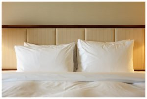 Baltimore Bed Bugs