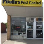Bed Bug Companies Winnipeg