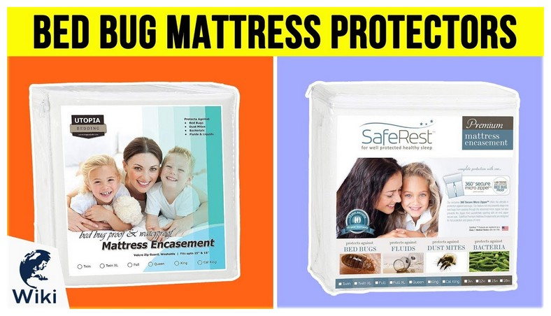 Best Mattress Protector Against Bed Bugs
