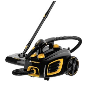 Best Steam Cleaner For Bed Bugs Uk