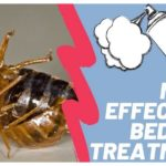 Diy Bed Bug Treatment