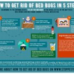 Does Steam Kill Bed Bugs On Contact?