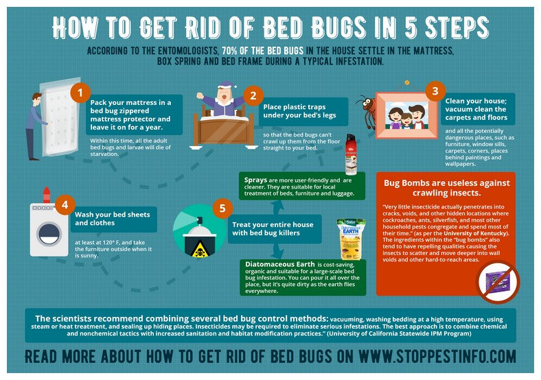 Home Products To Kill Bed Bugs