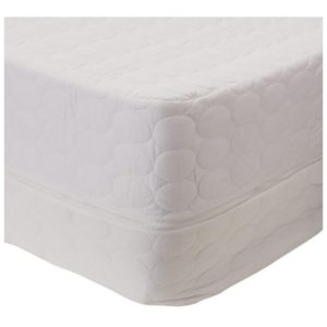 How To Eliminate Bed Bugs From Mattress