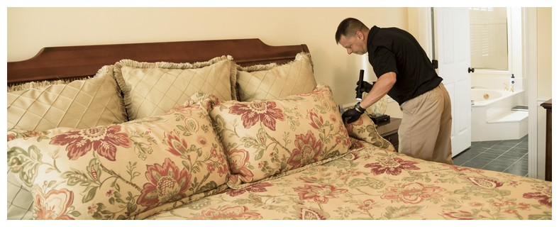How To Kill Bed Bugs With Heat