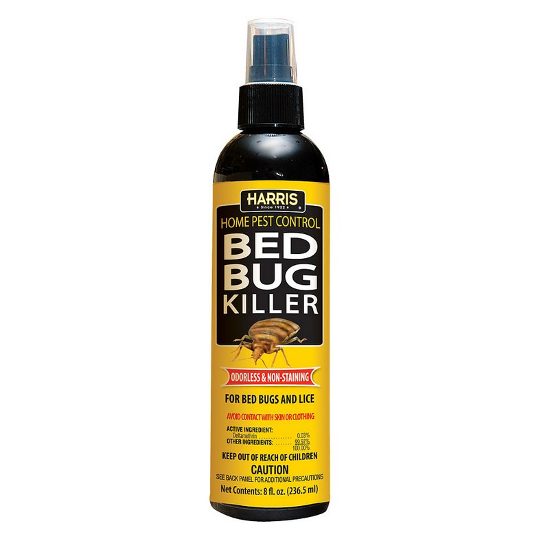 What Is The Best Bed Bug Spray For Travel