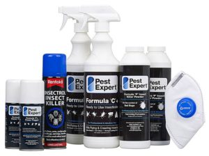 What Is The Most Effective Bed Bug Killer