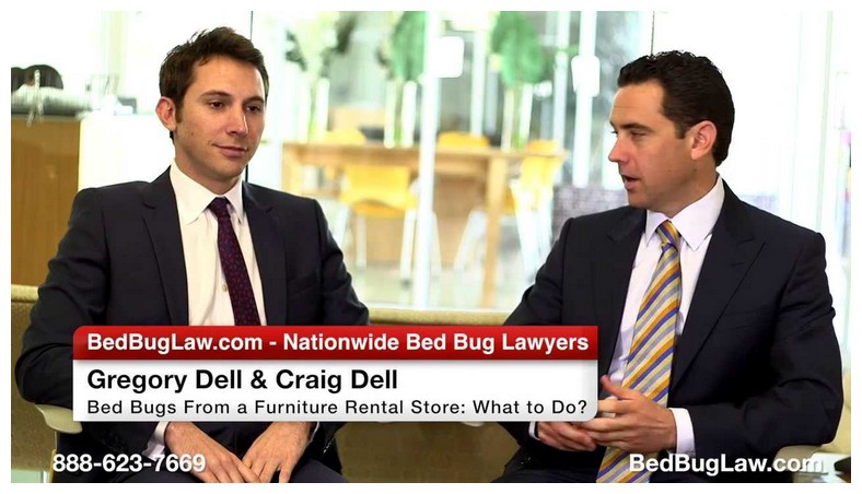 Bed Bug Attorney Chicago