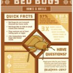 Home Remedies To Treat Bed Bugs Bite