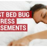Hot Shot Bed Bug Killer Fogger Reviews