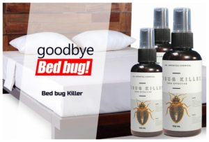 Bed Bug Bombs For Cars
