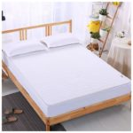 Best Bed Bug Mattress Protection