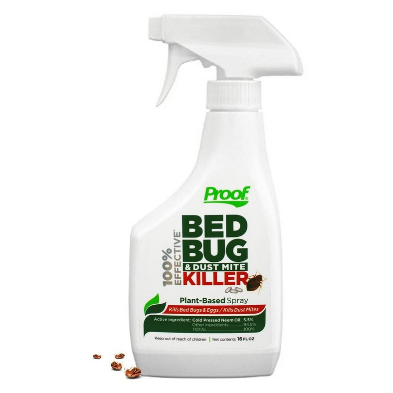 Best Cheap Way To Get Rid Of Bed Bugs