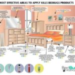 Best Product To Use For Bed Bugs!