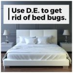 De Dust For Bed Bugs