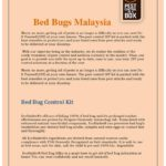 Diy Bed Bug Killer