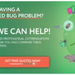 Does Heat Kill Bed Bugs Instantly?