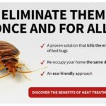 How Do I Get Rid Of Bed Bugs By Myself?