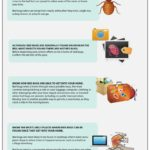 How Do I Get Rid Of Bed Bugs In The Home?