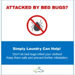 How Do You Get Bed Bugs Out Of Clothes?