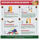 How Fast To Get Rid Of Bed Bugs?