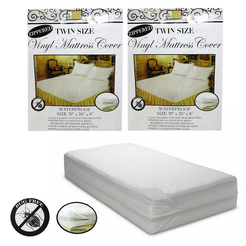 How To Clean Bed Bugs From A Mattress