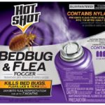 How To Get Rid Of Bed Bugs Fast And Easily?