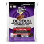 How To Get Rid Of Bed Bugs Mattress Cover?
